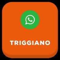 TriggianoICON